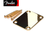 Genuine Fender® Plain Vintage Strat/Tele 4 Bolt – Gold Neck Plate